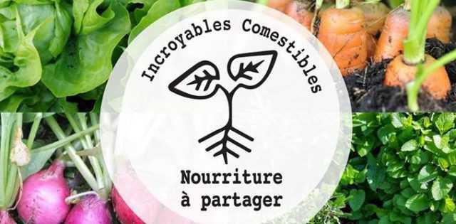 Ne ratez pas l'atelier de demain! A l'occasion de la fête de la nature organisée par Paris-Vallée de la Marne les 19,20 et 21 mai, un atelier sur comment faire […]